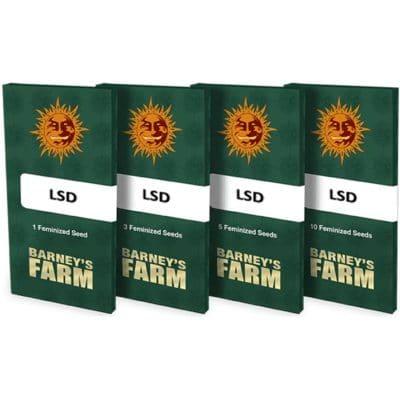 Graines féminisées LSD Barney's Farm