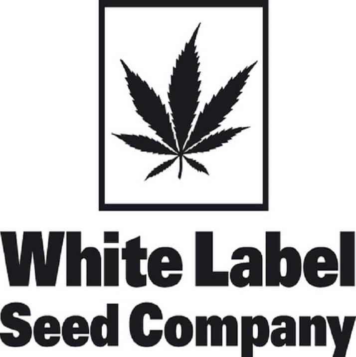 graines white label
