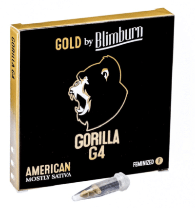 gorilla G4 BlimBurn Seeds