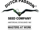 Auto CBD Victory Dutch Passion