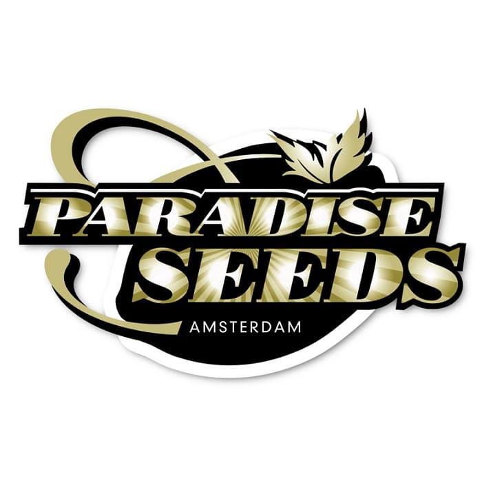 graines paradise seeds