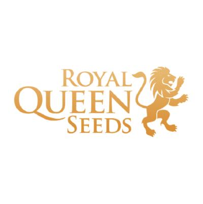 graines royal Queen Seeds
