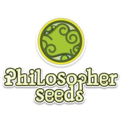 Graines Philosopher Seeds
