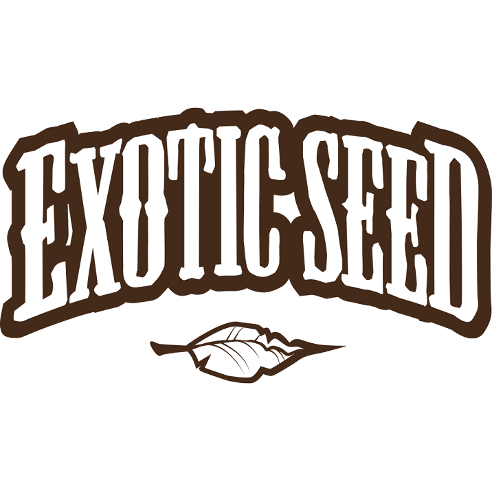 graines Exotic Seeds pas cher
