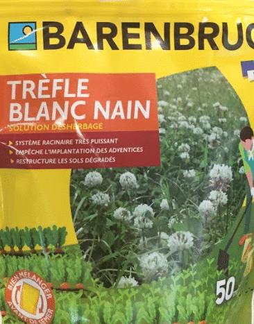 graines trefle blanc nain barenbrug