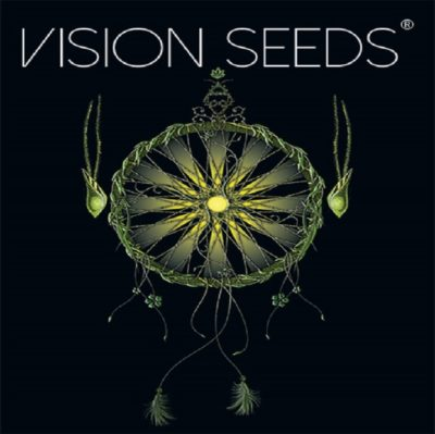 graines vision seeds