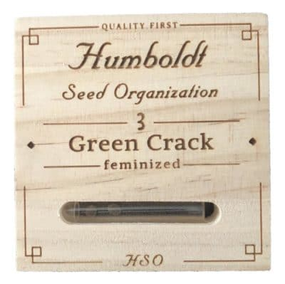 green crack graines canna humboldt