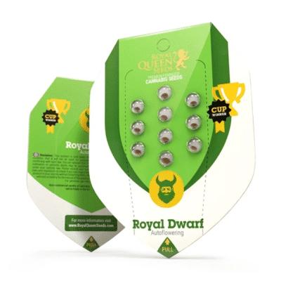 royal dwarf rqs