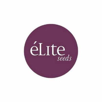acheter graines elite seeds