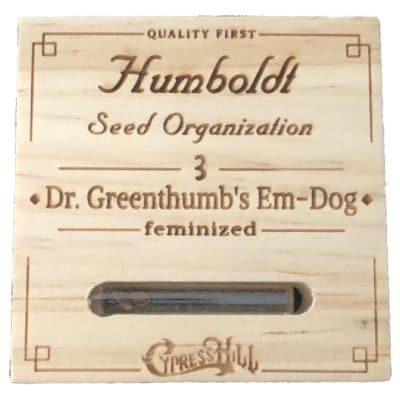 graines cannabis dr greentumb Humboldt seeds