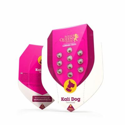kali dog féminisée RQS