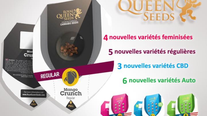 Nouvelles variétés Royal Queen Seeds