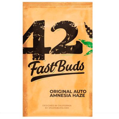 original auto amnesia fastbuds