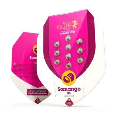 somango XL royal queen seeds