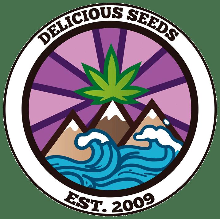 graines delicious seeds