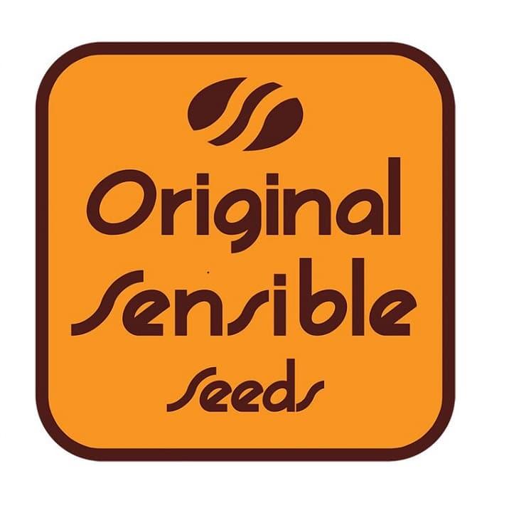 graines original sensible