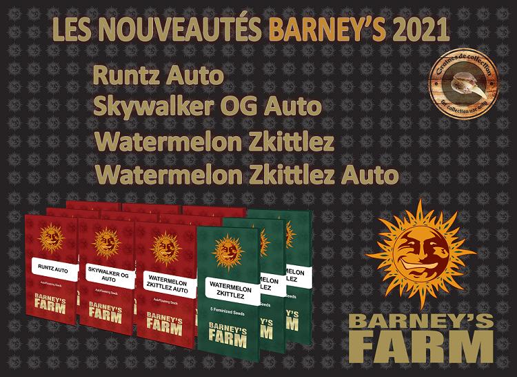 nouvelles graines barney's farm