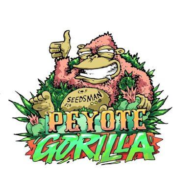 peyotte gorilla seedsman