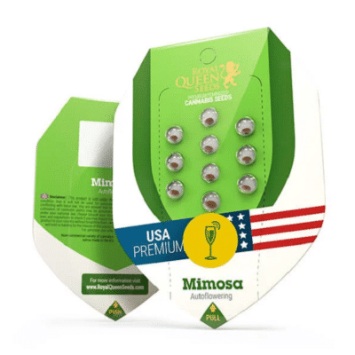 Graines mimosa auto royal queen seeds