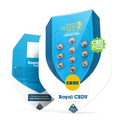 royal CBDV auto royal queen seeds