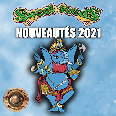 sweet seeds 2021 nouveautés graines
