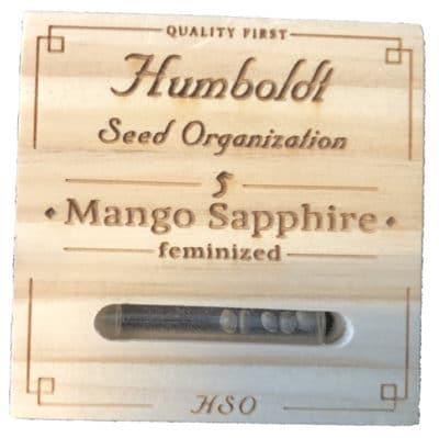 mango sapphire humboldt