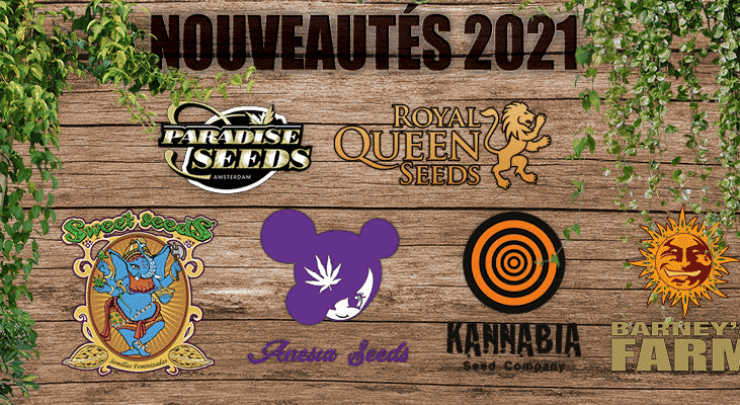 Nouvelles souches cannabis 2021