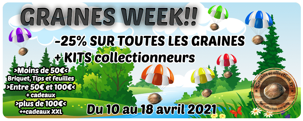promo graines collection france